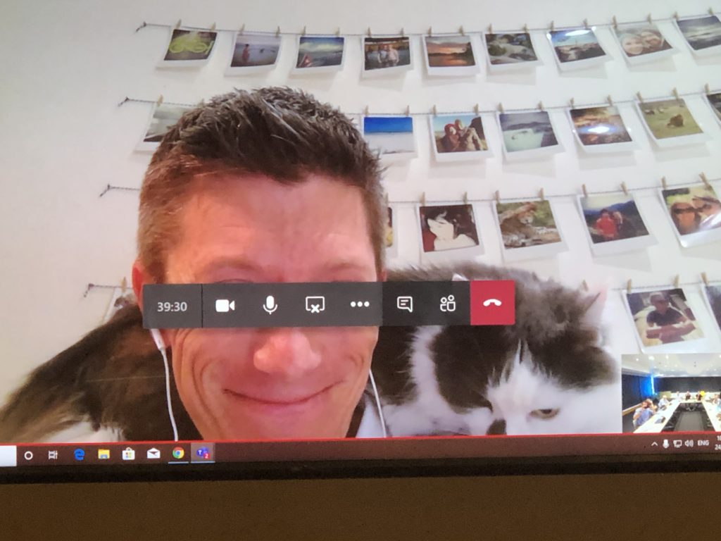 Brandon Video Conferencing with the Cat
